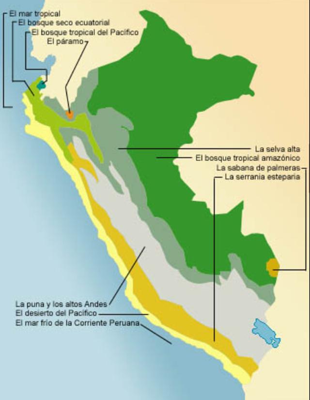 Las 11 Ecorregiones Serperuano Com